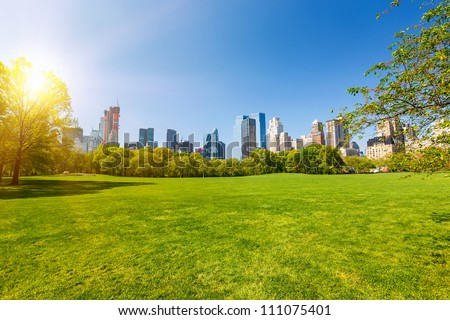 Central park at sunny day, New York City - stock photo