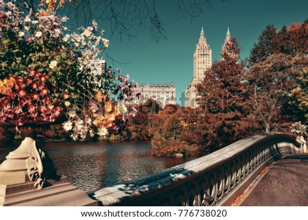 Central Park Autumn and buildings in midtown Manhattan New York City #776738020
