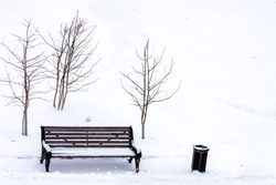Central park bench white covered snow and trees with copy space snow background