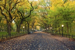 Central Park. Image of  The Mall area in Central Park, New York City, USA at autumn.