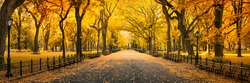 Central Park in New York City during autumn season