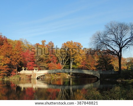 Central Park in the Fall, New York City