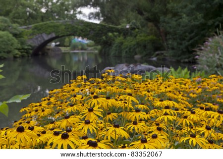 Central Park, New York City at the Gapstow bridge in summer