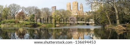 Central Park, New York City bow bridge panoramic
