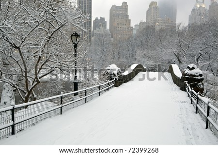 Central Park - New York City during a snow storm