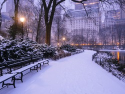 Central Park, New York City early morning at sunrise in winter snow storm