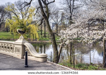 Central Park, New York City early morning in spring at the Bow bridge