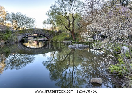 Central Park, New York City Gapstow bridge, early morning in spring
