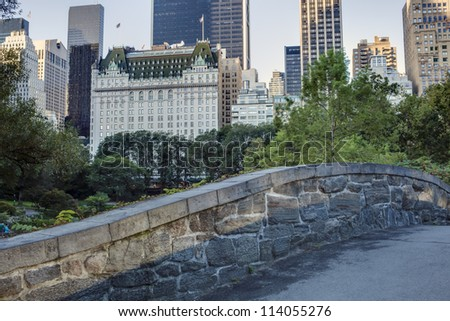 Central Park, New York City Gapstow bridge in summer