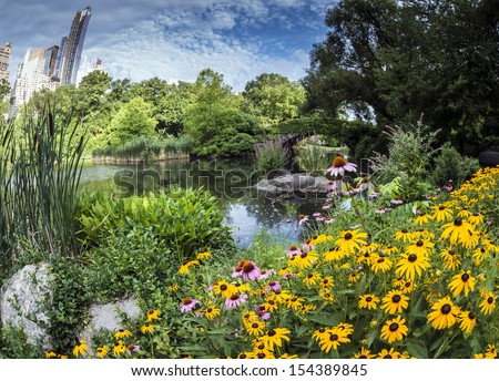 Central Park, New York City in summer at the Gapstow bridge