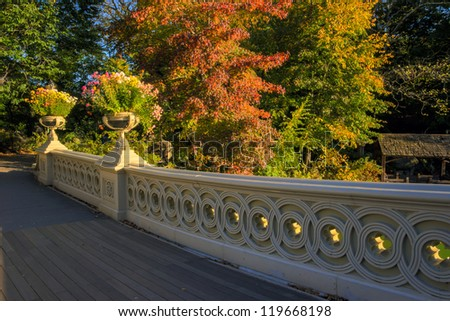 Central Park, New York City The Bow Bridge  is a cast iron bridge located in Central Park, New York City, crossing over The Lake and used as a pedestrian walkway,