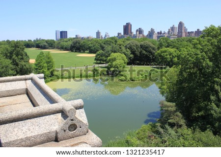 Central Park NYC Duck Pond