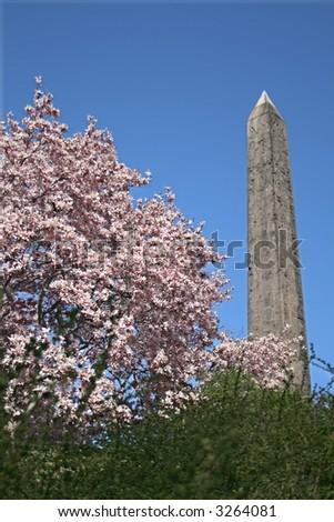 Central Park Obelisk in Springtime