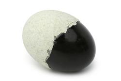 Century egg or preserved duck egg on white background