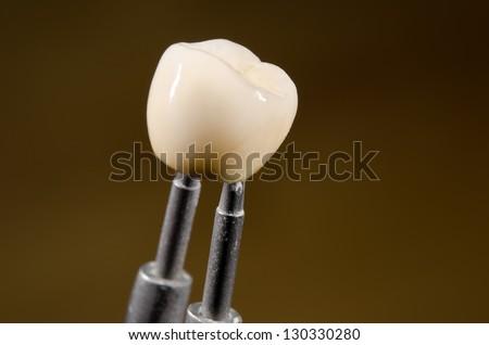 ceramic dental crown, tweezers