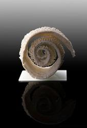 ceramic porcelain art form sculpture exhibition