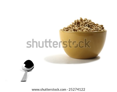 Cereal in Bowl with Spoon