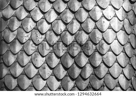 Chain armour element made of the steel plates Stock photo ©