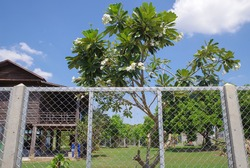 Chain Link Fence Barricade the house boundary. The boundary of the house is surrounded by a wire mesh fence.Protect the personal area, decorative wire mesh fence,industrial fence
