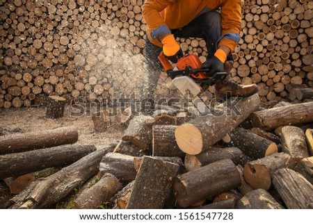 Chainsaw in action cutting wood. Man cutting wood with saw, dust and movements. Chainsaw. Close-up of woodcutter sawing chain saw in motion, sawdust fly to sides.