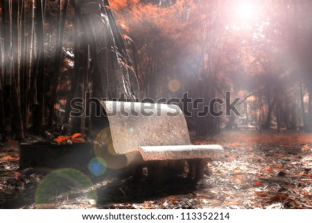 Chair in autumn forest.