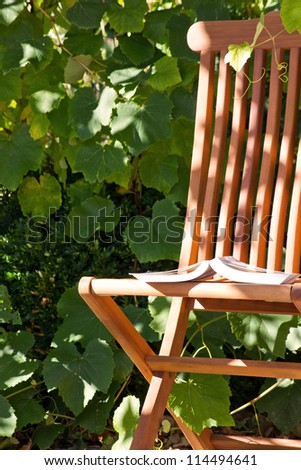 chair in the garden/chair/garden