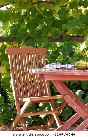 chair in the garden/chair/garden