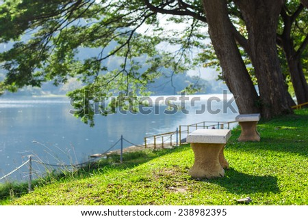 Chair on the grass and river with forest background