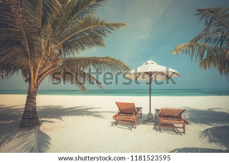 Chairs on Maldives beach - tropical  nature vacation background. Inspirational exotic travel destination #1181523595