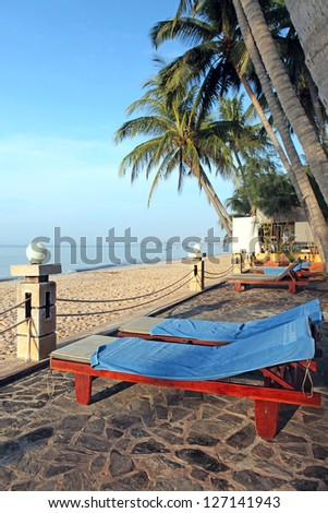 Chairs under palm trees on stunning tropical beach.