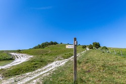 Chalk pathways in the South Downs, with a clear blue sky overhead