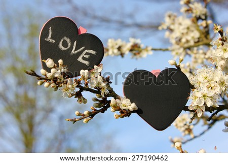 Chalkboard heart love, flower