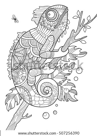 Chameleon Coloring Book For Adults Raster Illustration Anti Stress Adult