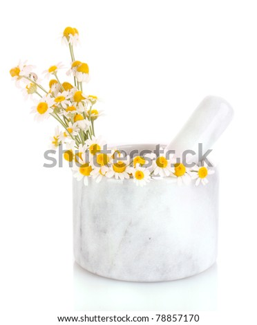 chamomile flowers in a mortar isolated on white