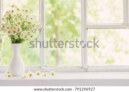 chamomile in vase on windowsill - Shutterstock ID 791296927