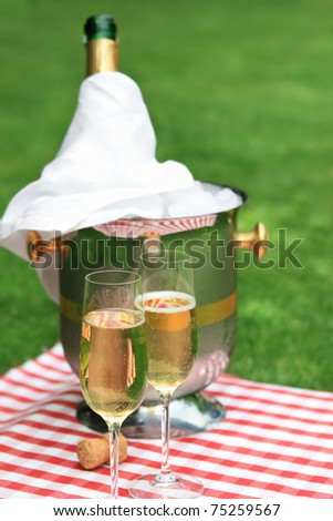 Champagne being poured at a summer picnic