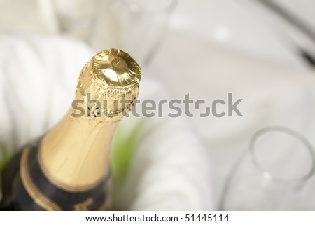 Champagne bottle in an icer
