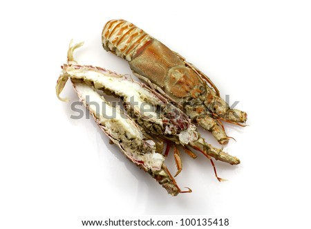 Champagne lobster, also known as Spiny lobsters or rock lobsters