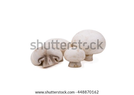 Champignon Isolated on White Background. #448870162