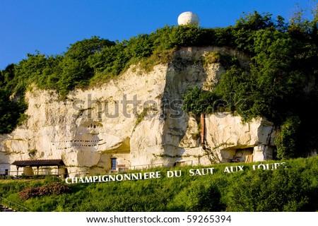 champignons cultivation near Montsoreau, Pays-de-la-Loire, France