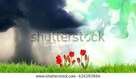 changing climatic weather conditions.ecology.environment #626283866