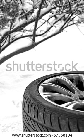 Changing Snow winter tire on white background