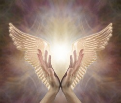 Channeling Angelic Healing Energy - female hands reaching up with Golden Angel wings either side on a warm toned ethereal  background with copy space above