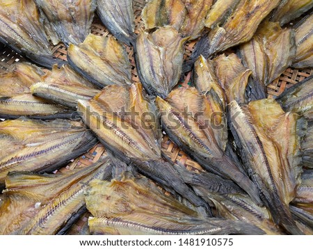 Channidae has a relatively large head  Long cylindrical shape  The caudal fin is slender, the tip is wide, the mouth is wide. #1481910575