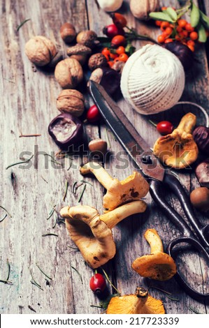 Chanterelle mushrooms, nuts and berries with vintage scissors and thread over wooden background. In retro filter effect. Top view. See series