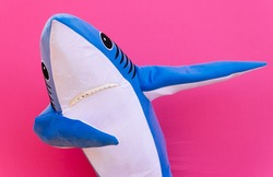 Character shark has a message for humanity about stop shark fishing and finning