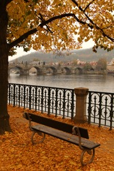 Charles Bridge in autumn  melancholy with autumn tree and fog, Prague, Czech Republic