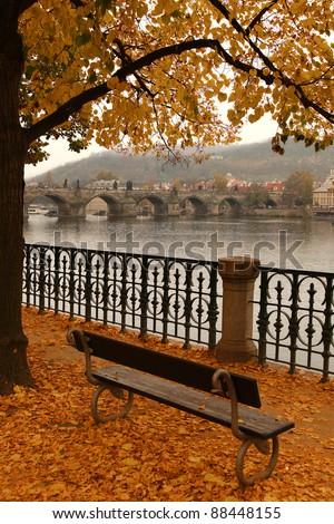 Charles Bridge in autumn  melancholy with autumn tree and fog, Prague, Czech Republic