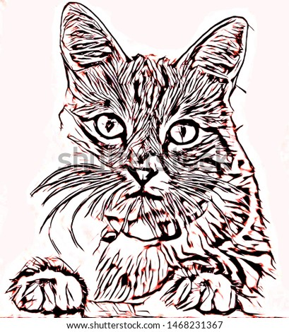 charming charming sketch cats, animal pictures