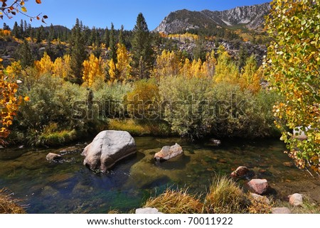 Charming creek in the mountains among the colorful yellow and orange bushes and trees